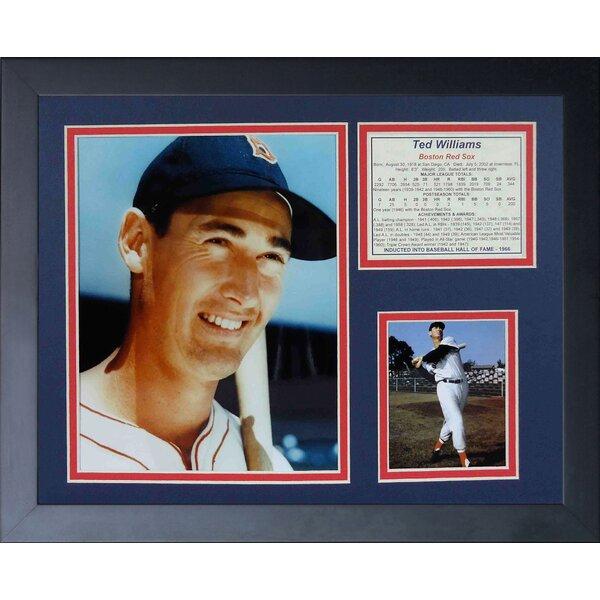 Ted Williams - Portrait Framed Memorabilia by Legends Never Die