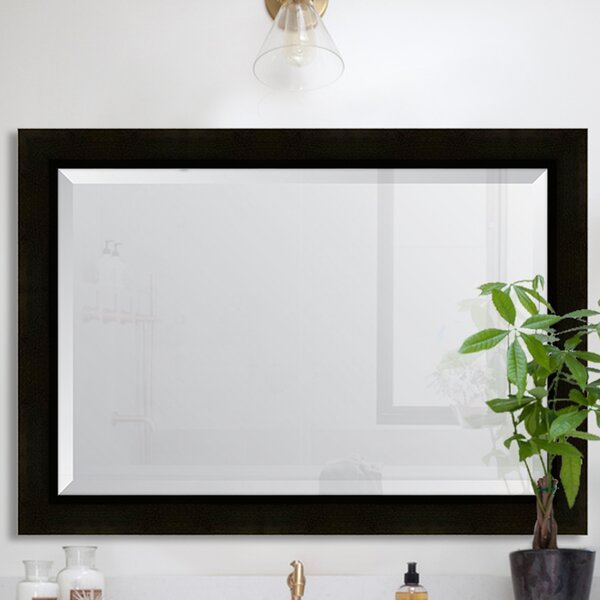 Sumatra Resin Frame Wall Mirror by Melissa Van Hise