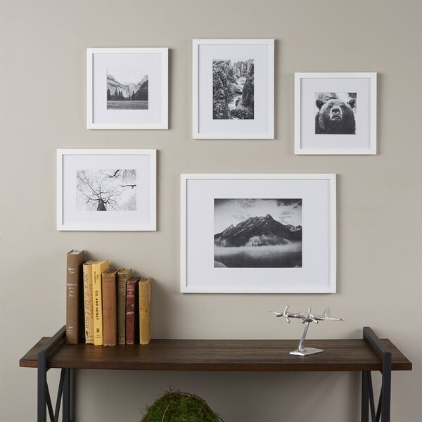 Wayfair Basics 5 Piece Picture Frame Set by Wayfair Basics™