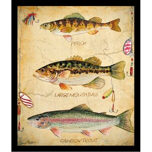 'Fish Hooks, Perch, Large Mouth Bass and Rainbow Trout Poster' by Jean Plout Framed Graphic Art by Buy Art For Less