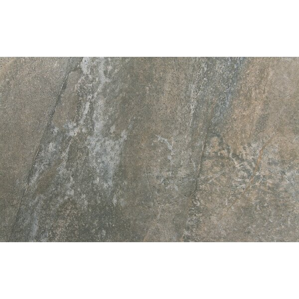 Trovata 12 x 24 Porcelain Field Tile in Scroll by Emser Tile