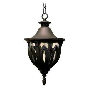 Comparison Phillipstown 4-Light Outdoor Pendant By Alcott Hill