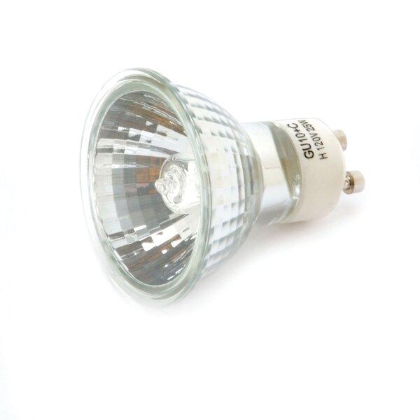 25 W Halogen Light Bulb by Darice