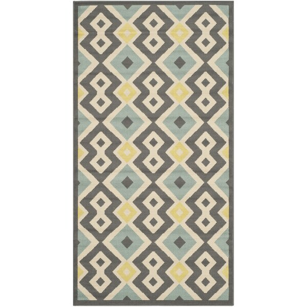 Hampton Geometric Indoor/Outdoor Area Rug by Safavieh