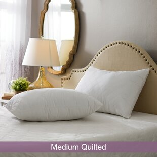 Affordable Wayfair Basics Medium Quilted Pillow (Set of 2) ByWayfair Basics™