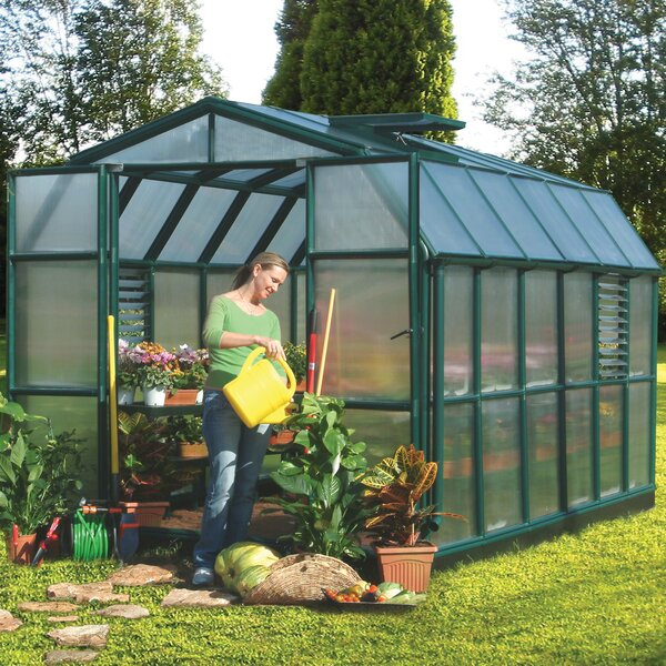 Prestige 2 Twin Wall 8 Ft. W x 12 Ft. D Greenhouse by Rion Greenhouses
