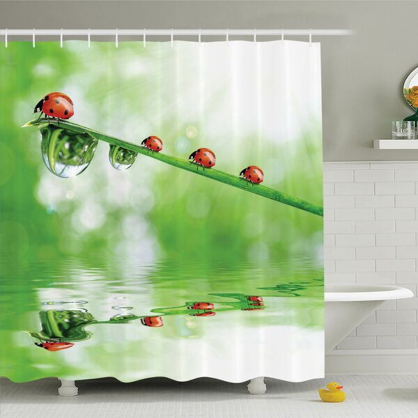 Nature Ladybugs on Stream Sun Shower Curtain Set by Ambesonne