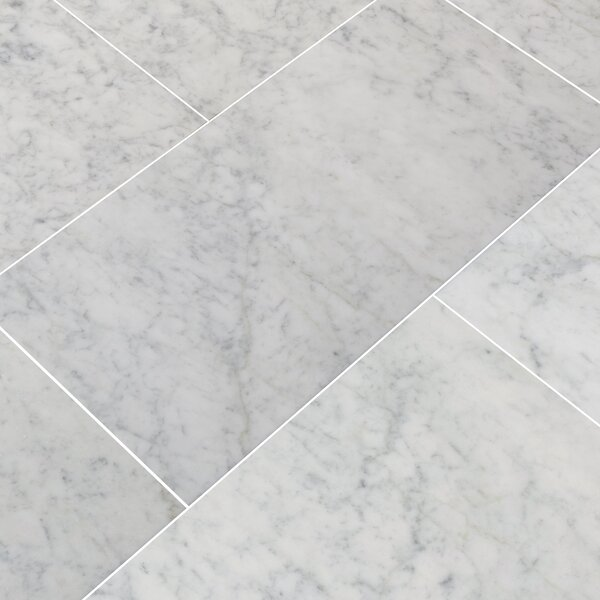 12'' x 24'' Marble Field Tile in Carrara White by MSI