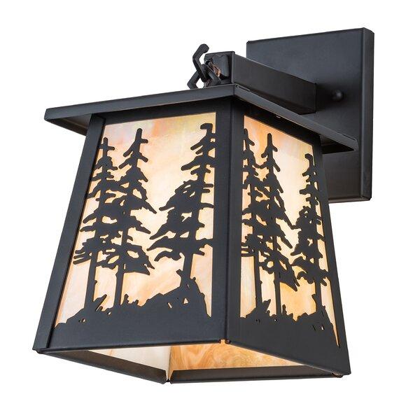 Owego Tall Pine Outdoor Wall Lantern by Loon Peak