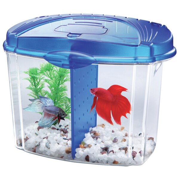 0.5 Gallon Betta Bowl Desktop Aquarium Kit by Aqueon