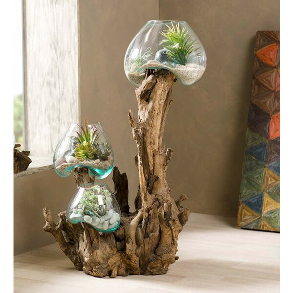 Rawls Branch Recycled Glass Terrarium by Bloomsbury Market