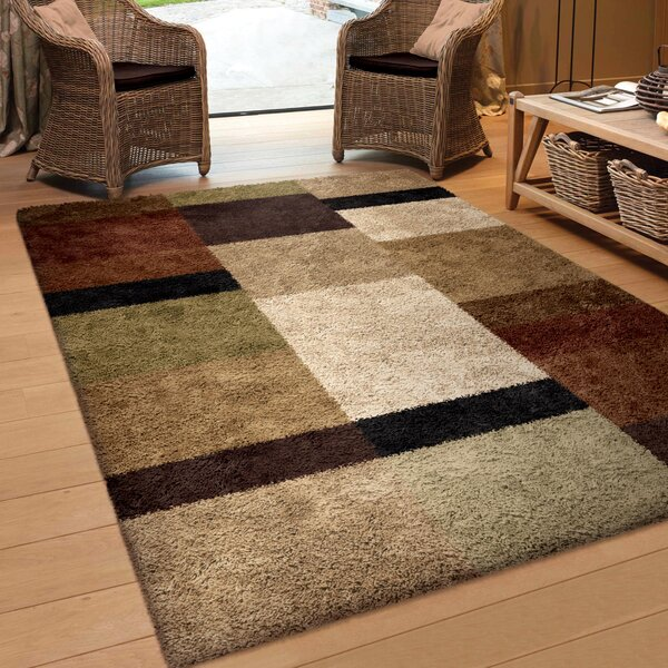 Daniel Brown Area Rug by Threadbind