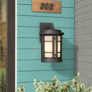 Find the perfect Cardin 1-Light Outdoor Wall Lantern By Brayden Studio