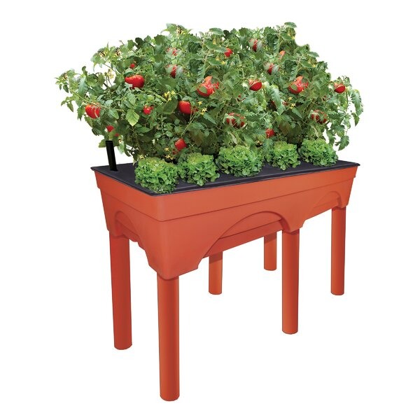 City Picker Self Watering Plastic Raised Garden by EMSCO Group