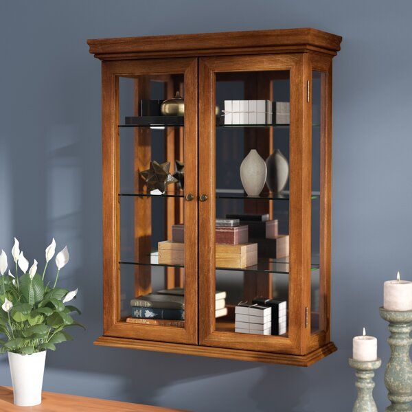 Cassette Wall-Mounted Curio Cabinet by Charlton Home