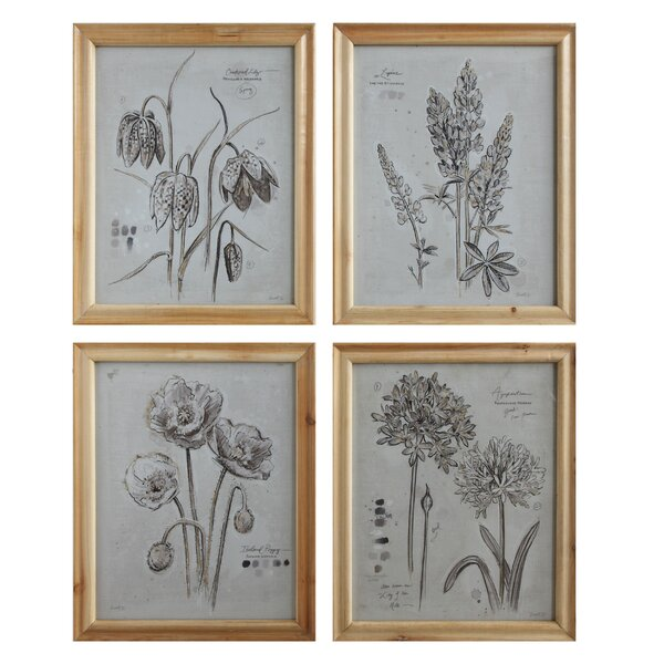 4 Piece Framed Painting Print by Birch Lane™