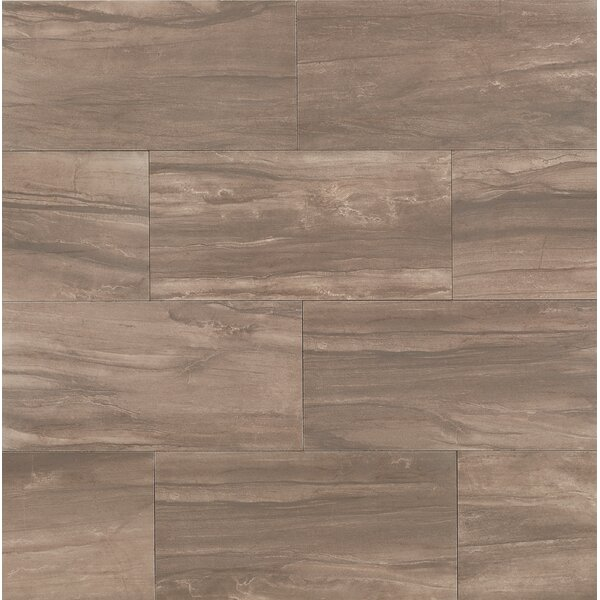 Athena 20 x 40 Porcelain Field Tile in Cliff by Bedrosians