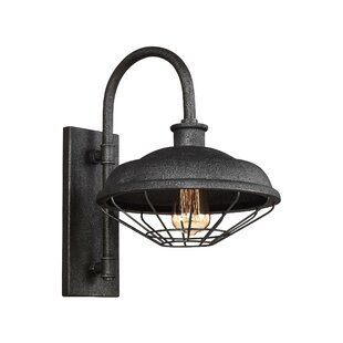 Look for Januario 1-Light Metal Shade Outdoor Barn Light By 17 Stories