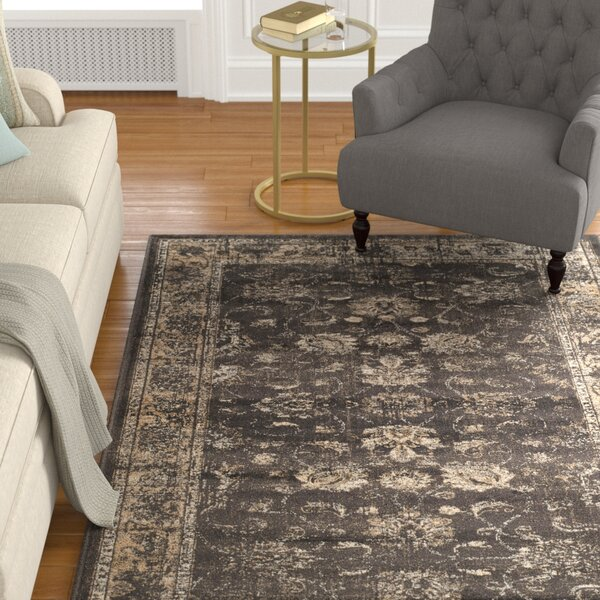 Crittenden Soft Anthracite Area Rug by Charlton Home