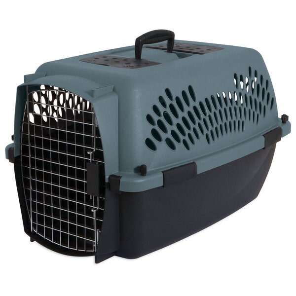 Metallic Fashion Pet Carrier by Petmate