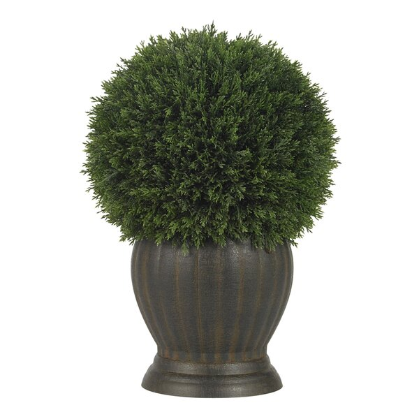 Cedar Ball Topiary in Decorative Vase by Nearly Natural