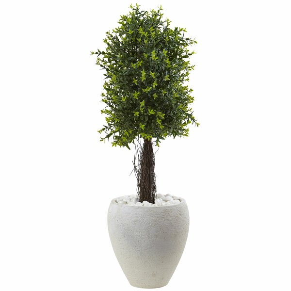 Lxora Floor Moss Topiary in Planter by Nearly Natural