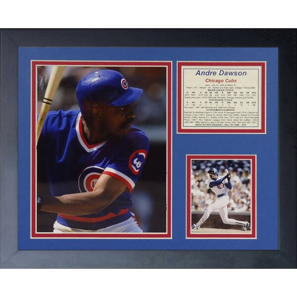 Andre Dawson Framed Memorabilia by Legends Never Die