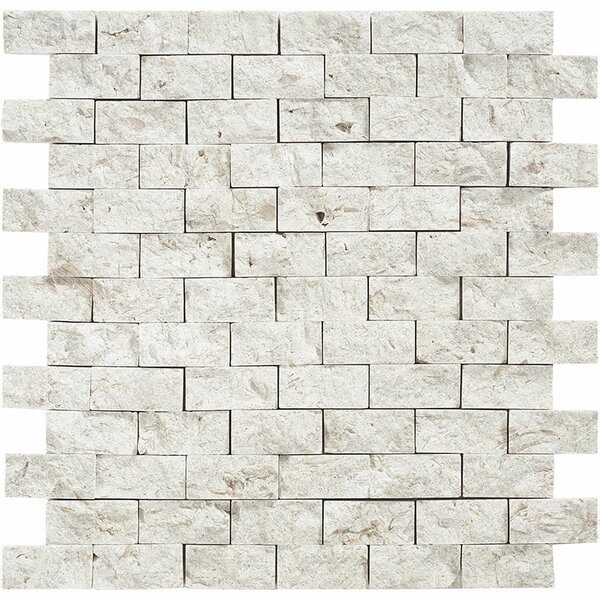 Split Face 1 x 2 Stone Mosaic Tile in Fossil Stone by Parvatile