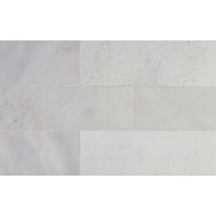 Greecian 4 X 12 Marble Subway Tile In White