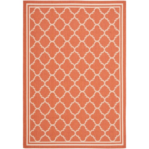 Larson Orange Handwoven Flatweave Terracotta/Bone Indoor/Outdoor Area Rug by Sol 72 Outdoor Sol 72 Outdoor