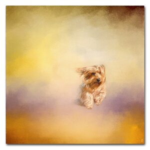 'Yorkie Running Into the Wind' Graphic Art Print on Wrapped Canvas by Trademark Fine Art