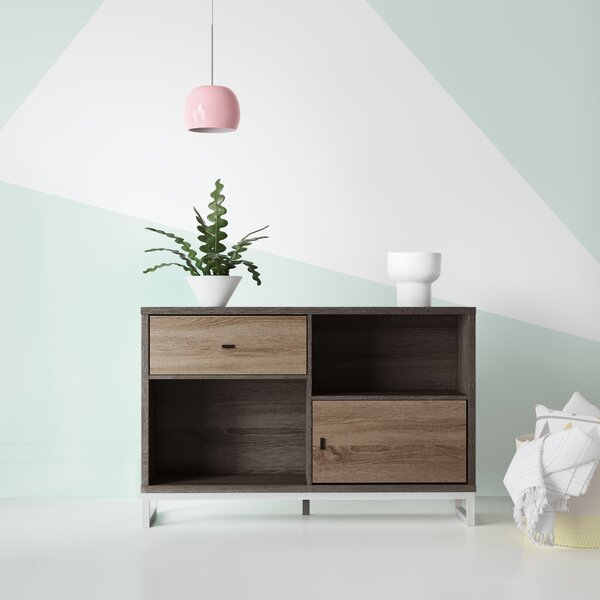 Chadwick Modern Storage 1 Door Accent Cabinet by Hashtag Home