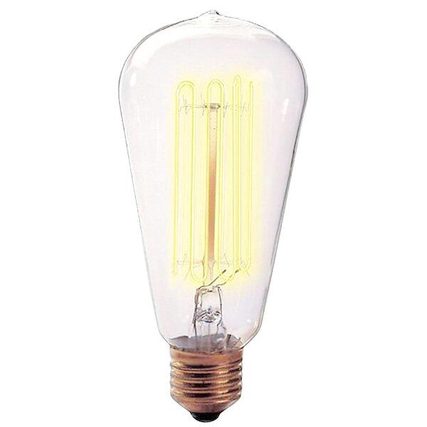 Nostalgic Edison 40W 120-Volt Incandescent Light Bulb II (Set of 4) by Bulbrite Industries