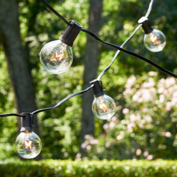 Ashantilly Light String by Birch Lane™