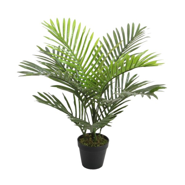Faux Floor Palm Plant in Pot by Bay Isle Home