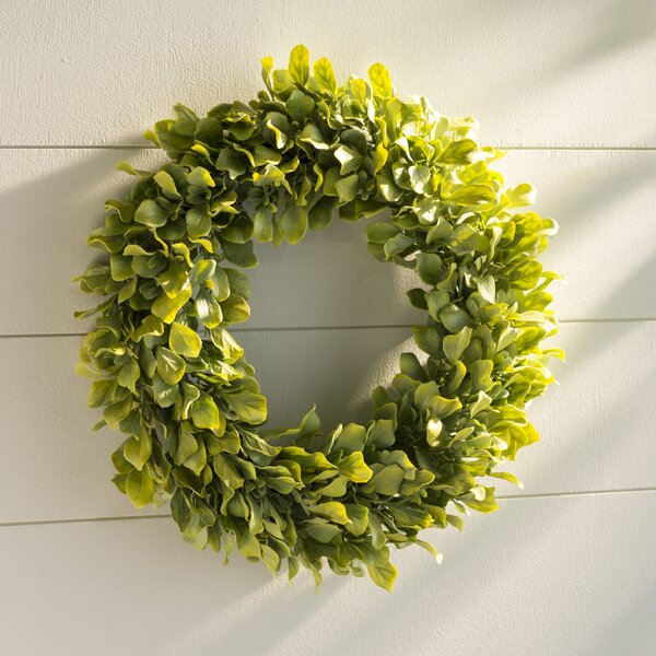 Plastic Wreath by Laurel Foundry Modern Farmhouse