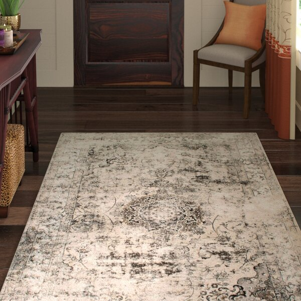 Doheny Gray/Ivory Area Rug by World Menagerie