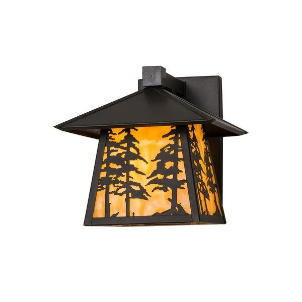 Ziemer Outdoor Wall Lantern by Loon Peak
