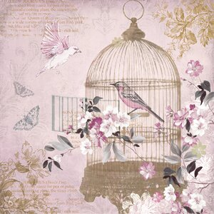 Enchanted Birdcage Graphic Art on Canvas by Arthouse