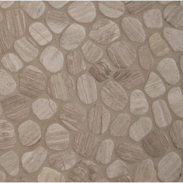 Oak Tumbled 12 x 12 Marble Pebble Mosaic Tile in Gray by MSI