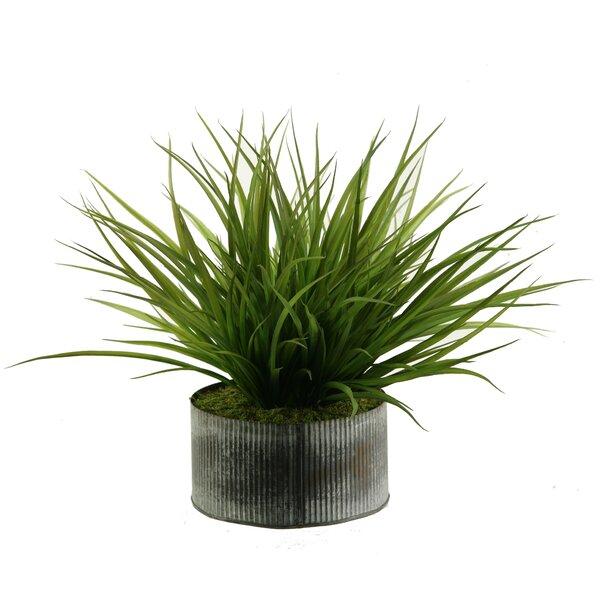 Wild Grass in Round Tin Planter by D & W Silks