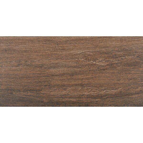 Marin 12 x 24 Porcelain Wood Look Tile in Mainland by Itona Tile