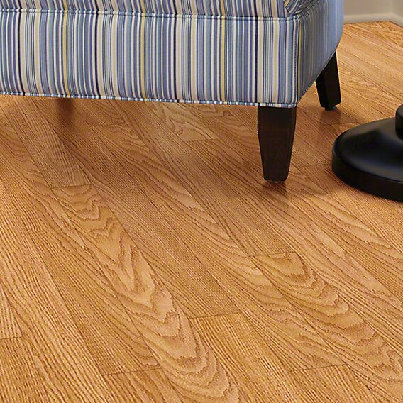 Maestro 4 x 48 x 8mm Laminate Flooring in Encore by Shaw Floors