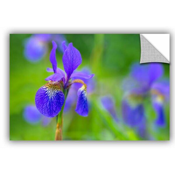 Blue Iris 2 Wall Decal by House of Hampton