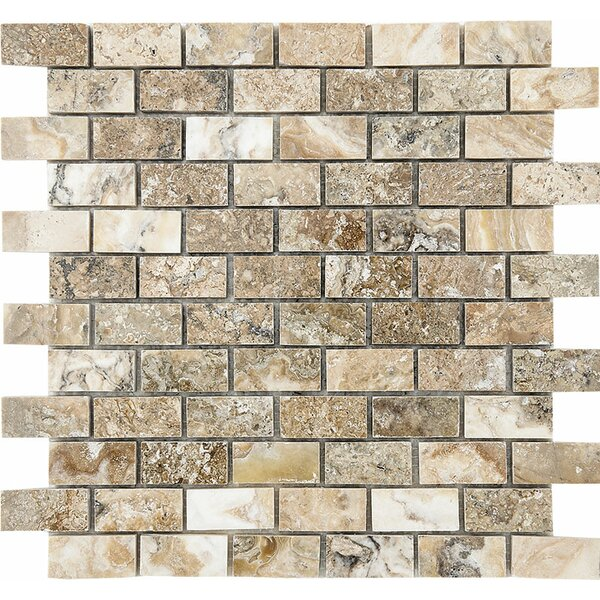 Brick 1 x 2 Stone Mosaic Tile in Antico Polished by Parvatile