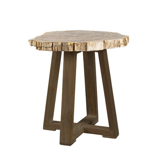 Griffis Petrified Wood End Table by Union Rustic