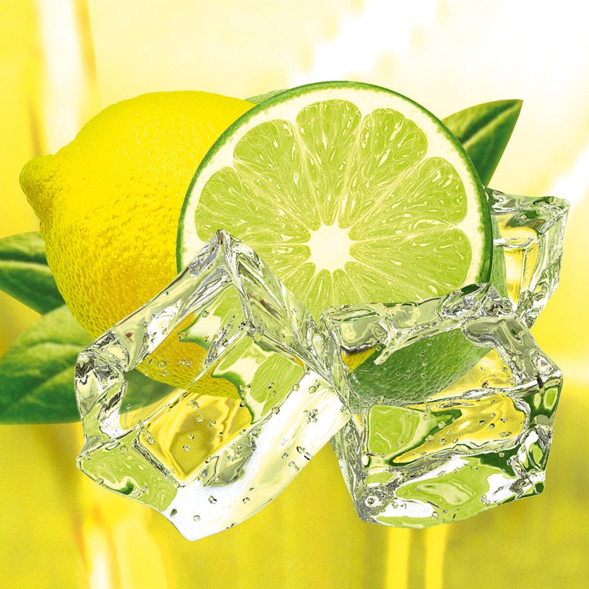 Platin Art Deco Glass Fresh Lemon and Lime Photographic Print ...