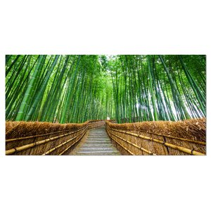 'Path to Bamboo Forest' Photographic Print on Wrapped Canvas by Design Art
