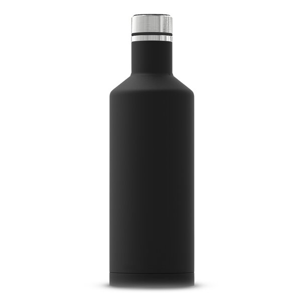 Samples Insulated 17 oz. Stainless Steel Water Bottle by Ebern Designs