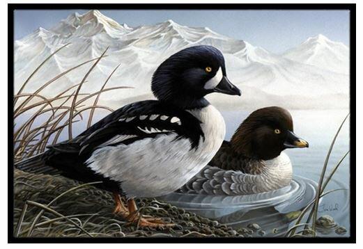 Goldeneye Ducks in the Water Non-Slip Outdoor Door Mat